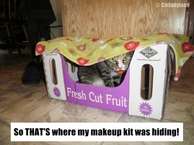 Den nyfikna fallet saknas makeup!