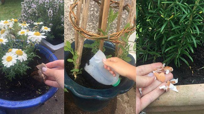 Konstiga sätt att använda 21 husgeråd i din trädgård